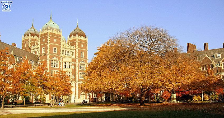 5 trường Đại học đào tạo Luật hàng đầu tại Mỹ