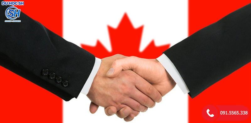 Nhóm ngành phổ biến tại Canada - Nhóm Ngành Kinh Doanh